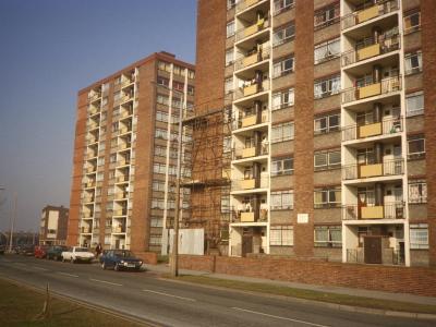View of Cherryfield Heights blocks