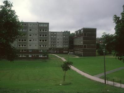 View of North Section of Ashfield Valley development