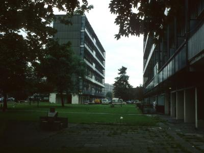 View of 11-storey blocks