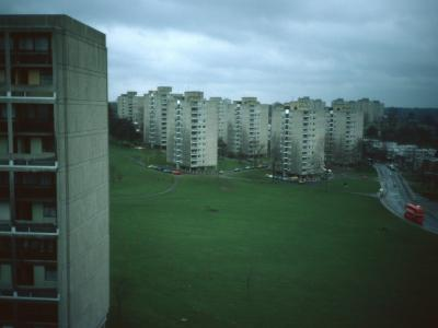 General View of Alton Estate (West) from Dunbridge House
