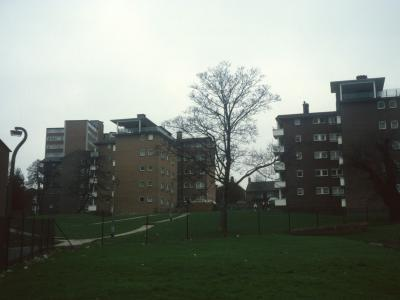 View of 5-storey blocks on William Willison Esate with 9-storey block in background