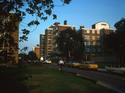 View of North Section of Ashburton Estate