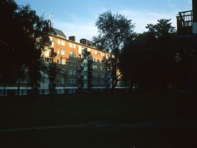View of South Section of Ashburton Estate