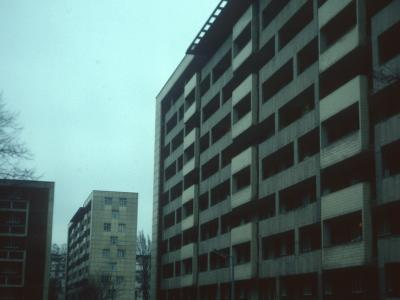 View of blocks on Hallfield Estate