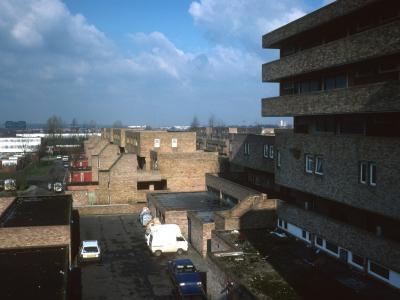 View of Serpentine Court