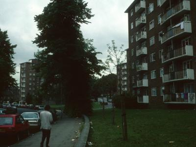 View of 7-storey blocks on Harben Road