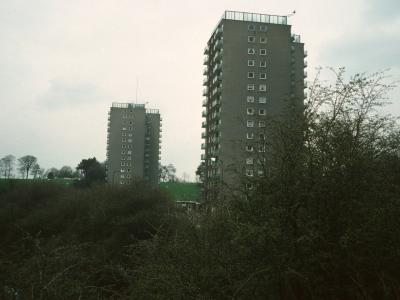 View of Winchester Court and Woodthorpe Court (in background) from Chestnut Walk