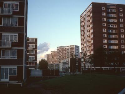 View of 6-storey blocks on Bradburne Way and Elm Tree Tower with 16-storey Cromwell Street blocks in background