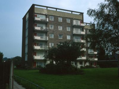 View of Park Court
