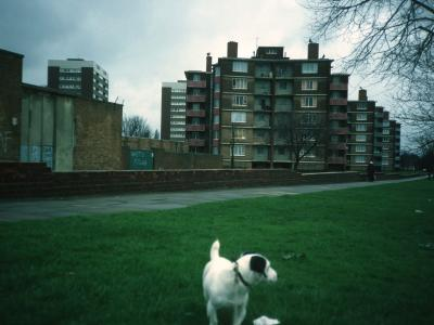 View of 6-storey and 11-storey blocks on Hawkesley Farm Moat Estate