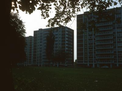 View (from right to left) of Coppice House, Hollypiece House, and Home Meadow House