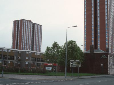 View of Spruce Court and Thorn Court
