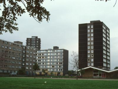 View of Whitebeam Court, Salix Court, and Malix Court with John Lester Court in background