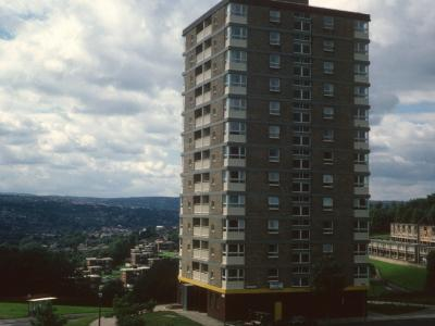 View of Parkfield