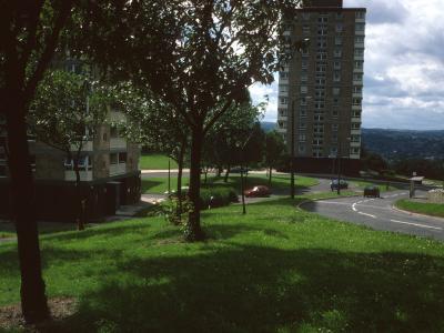 View of Pemberton and Bankwood