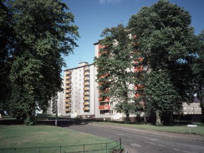 View of Foggyley 1st Development