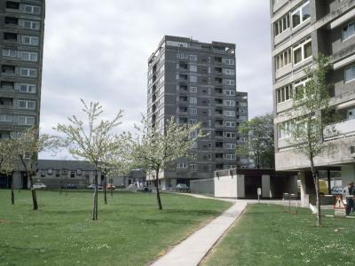 View of Hazlehead I development