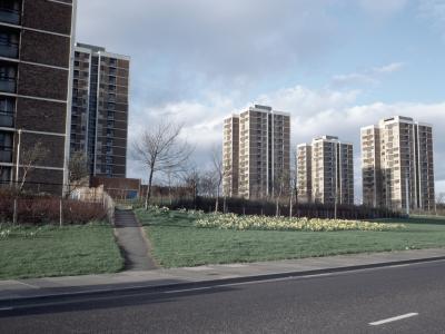View of Scotswood Road (Hawes Street) development